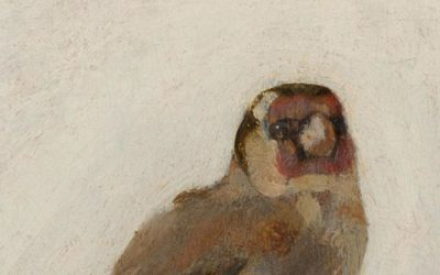 The Intriguing Mystery of the Goldfinch