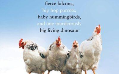 Birdology by Sy Montgomery