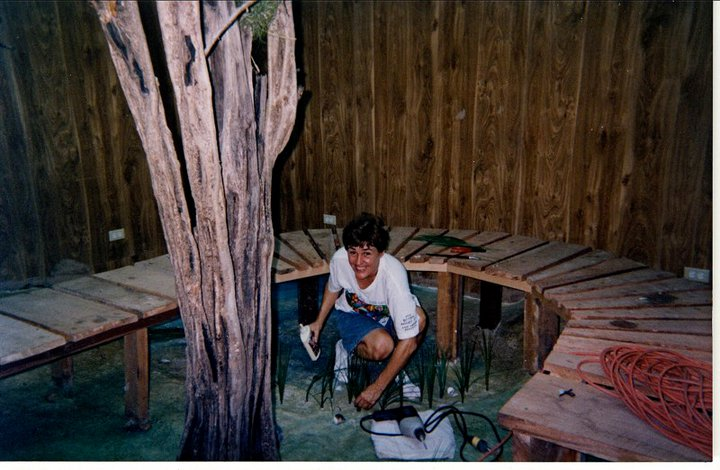 2001 / Internship To Build An Educational Bird Migration Exhibit, Belize Audubon Society