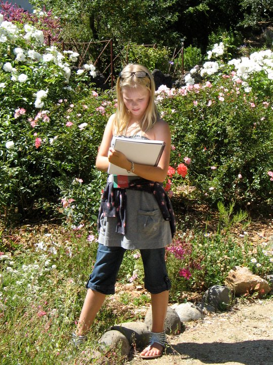2006 – 2012  Nature Journaling in Urban Areas