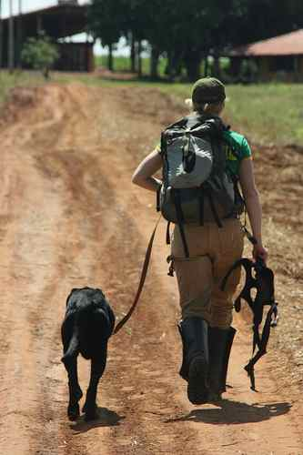 2007 / Scat Smelling Rescue Dogs to save large mammals in Brazil