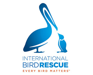 2010 / INTERNATIONAL BIRD RESCUE & RESEARCH, IBRR