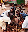 2008 / REFUGEE CHILDREN: LUGUFU REFUGEE CAMP CONSERVATION PROGRAM