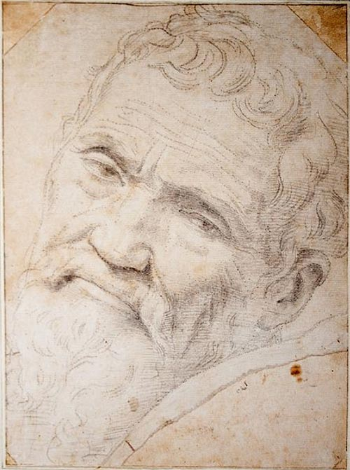 Michelangelo: A Mixture of True Talent Meeting Great Luck and Perseverance