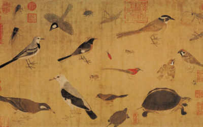 Famous Bird Paintings From China