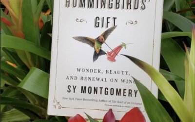 "It's Published, ""The Hummingbirds' Gift"""